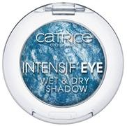 Catr_IntEyeWetDryShadow070