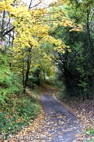 Herbst-Innen-Aussen