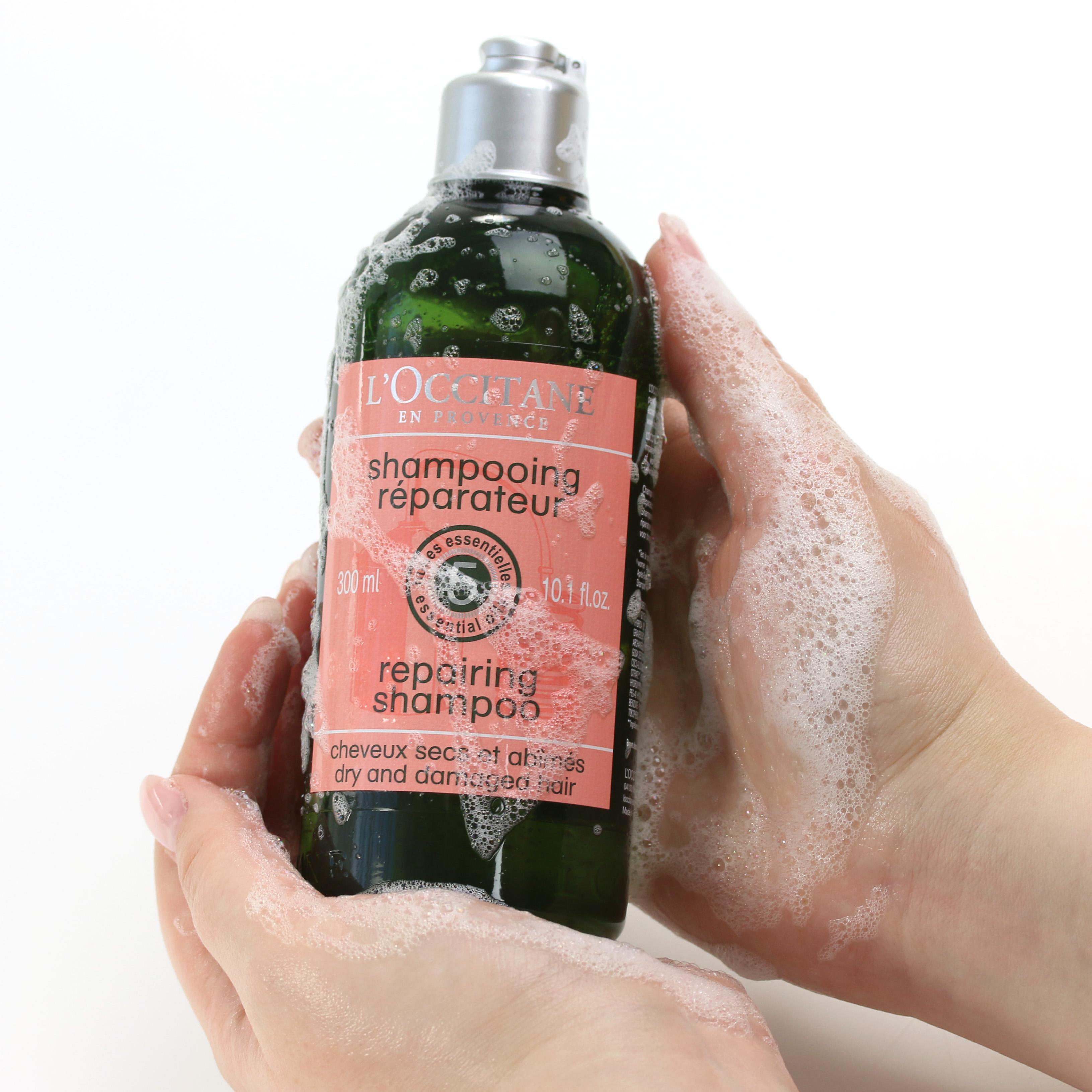 L'Occitane Aromachologie Shampoo Anwendung