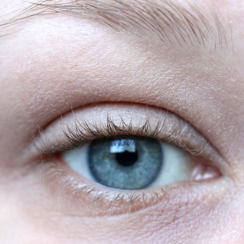 Tutorial Brown Eyeshadow