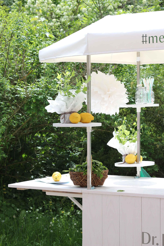 Rezepttipp: Eine Kanne Schwarztee Kochen Und Abkühlen Lassen. Viel Frische  Melisse, Zitronen Und Limettenscheiben Dazu Geben.