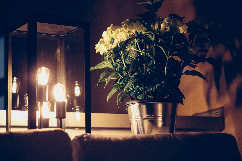 meine oase in der gro stadt mit tchibo balkon und gartenm beln innenaussen. Black Bedroom Furniture Sets. Home Design Ideas